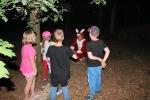 Pohadkovy les pro deti